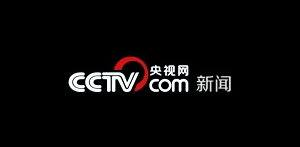 Rezzil CCTV Logo
